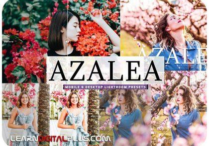 پریست حرفه ای لایت روم Azalea