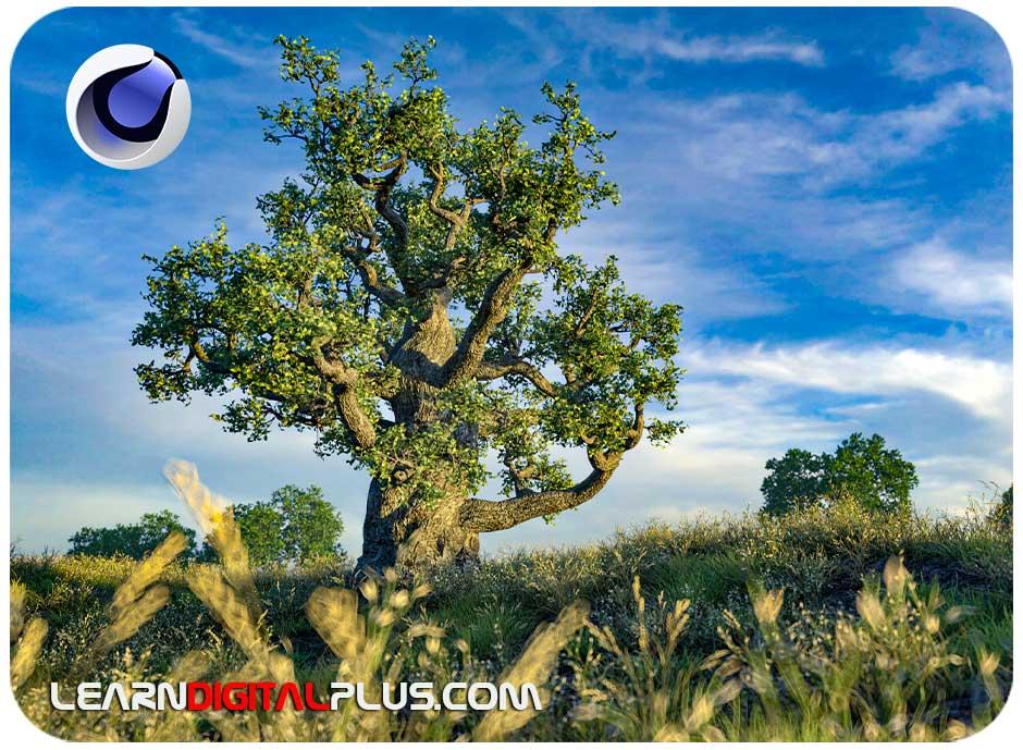 ساخت درخت، گل و گیاه در سینما4دی