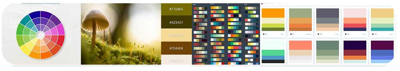رنگ های ست (بخشسوم)