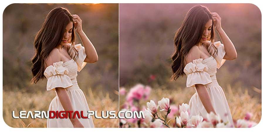 تصاویر لایه باز پوششی گل (فتوشاپ)